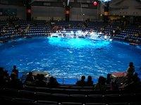 20060320_shinagawa_aquarium_1