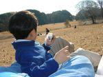 20061223_meijijingu_1