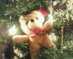 20071201_teddy
