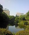20070606hibiya_park_1