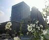 20070606hibiya_park_2
