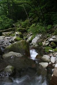 080809_kiyosato_stream_2