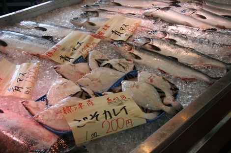 20100802_5_shibetsu