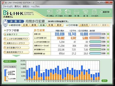 20101231_walkdata_2
