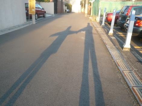 20110110_shadow