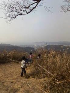 20110206_kinubariyama_3