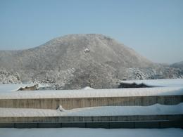20110112_haranreyama