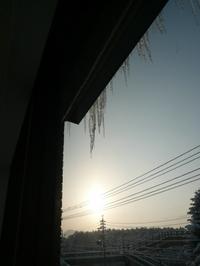 20110112_tsurara