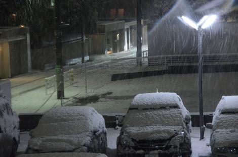 20120123_snow