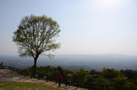 20120505_wakakusayama