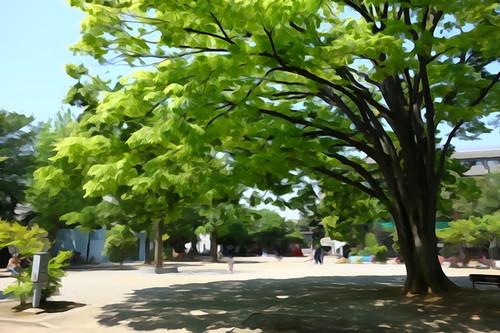 20130428_ooyama