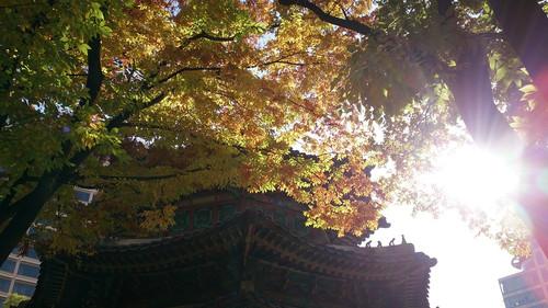 20131108_seoul1