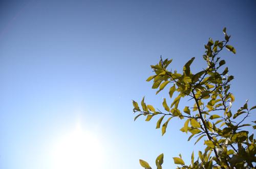 20140101_blue_sky