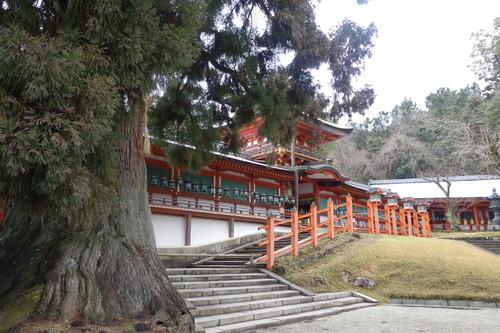 20140209_kasuga2
