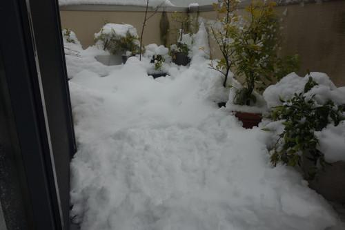 20140215_snow