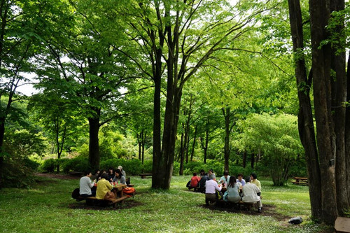 20150516_akagi_picnic