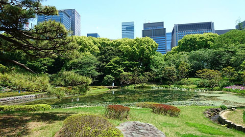 20160505_kokyo_4
